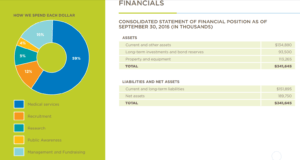 be the match - nonprofit annual report template