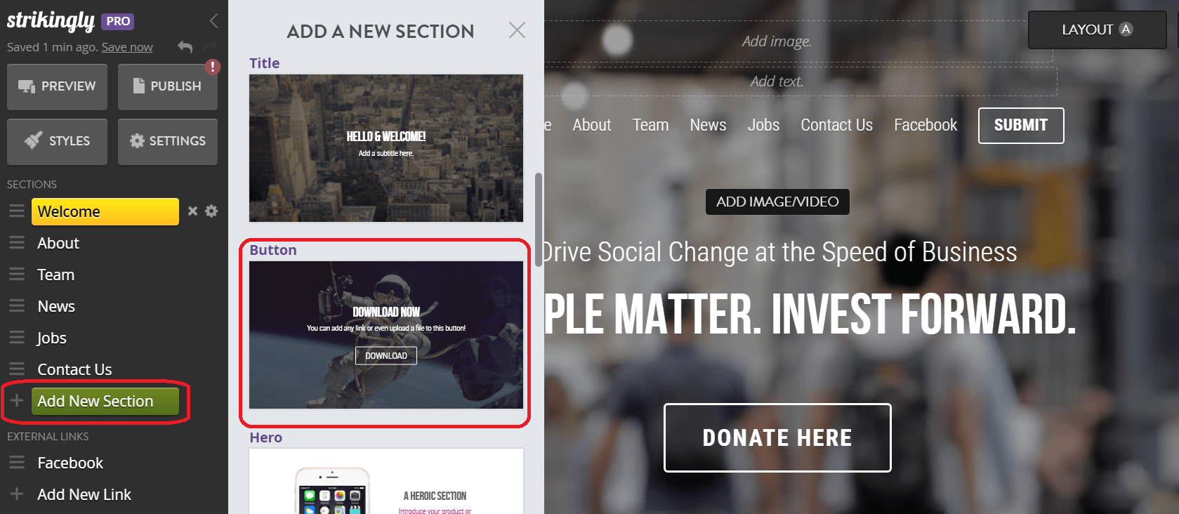 donate button on strikingly