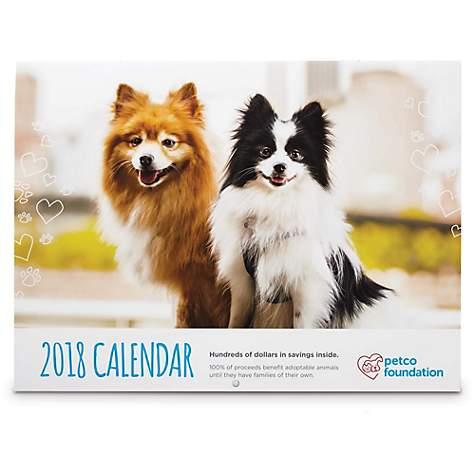 16 Effective Animal Shelter Fundraising Ideas - Pet Fundraiser Ideas