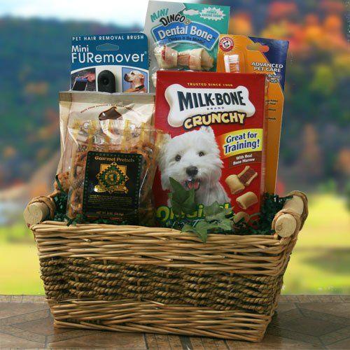 16 Effective Animal Shelter Fundraising Ideas - Pet