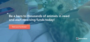 Animal fundraising