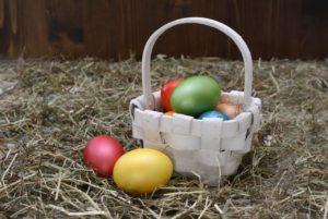 Easter egg - school fundraising
