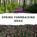 Top 10 Spring Fundraising Ideas