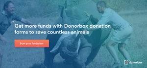 Animal rescue fundraising