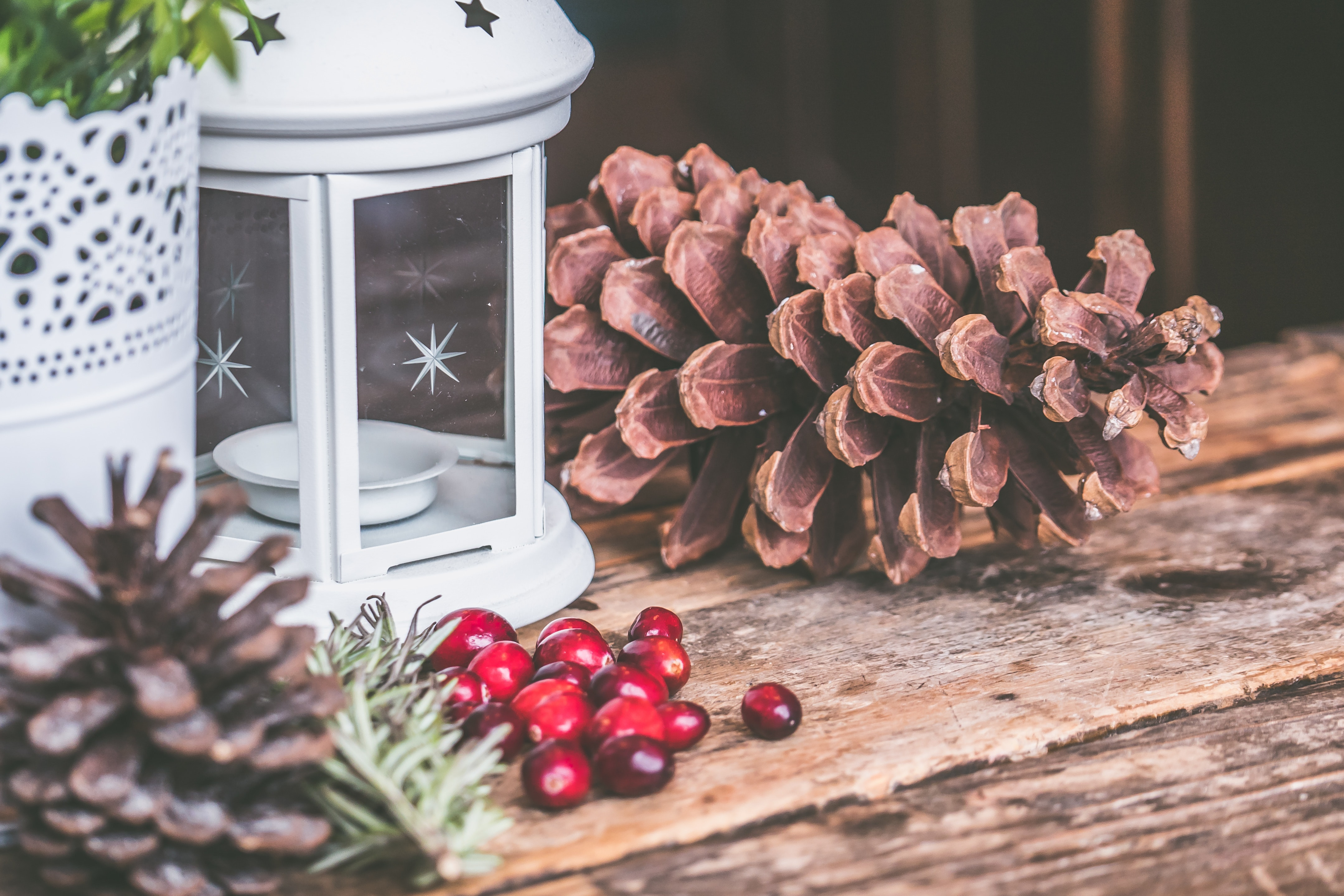 Christmas Fundraising Ideas.15 Creative Winter Fundraising Ideas 2018 Donorbox