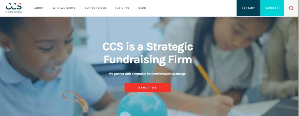 nonprofit fundraising consultant