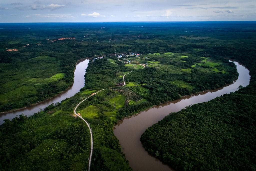 environment protection nonprofits