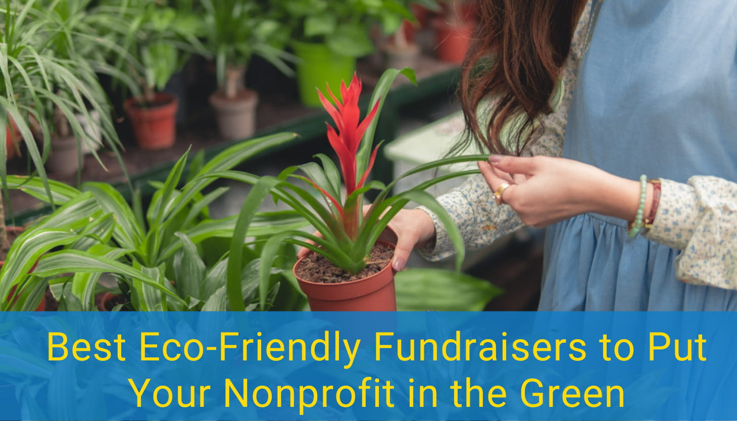 7 Best Eco-Friendly Fundraisers to Put Your Nonprofit in the Green