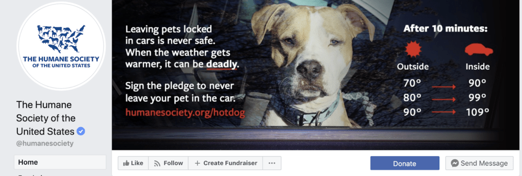 Humane society Nonprofits Gained Donors Through Social Media