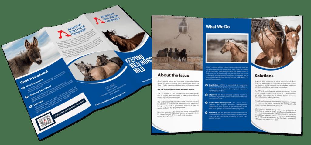 brochures - nonprofit print marketing