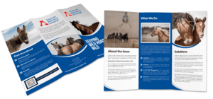 brochures - nonprofit print marketing