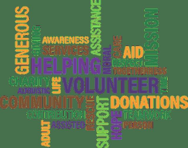 models of fiscal sponsorships