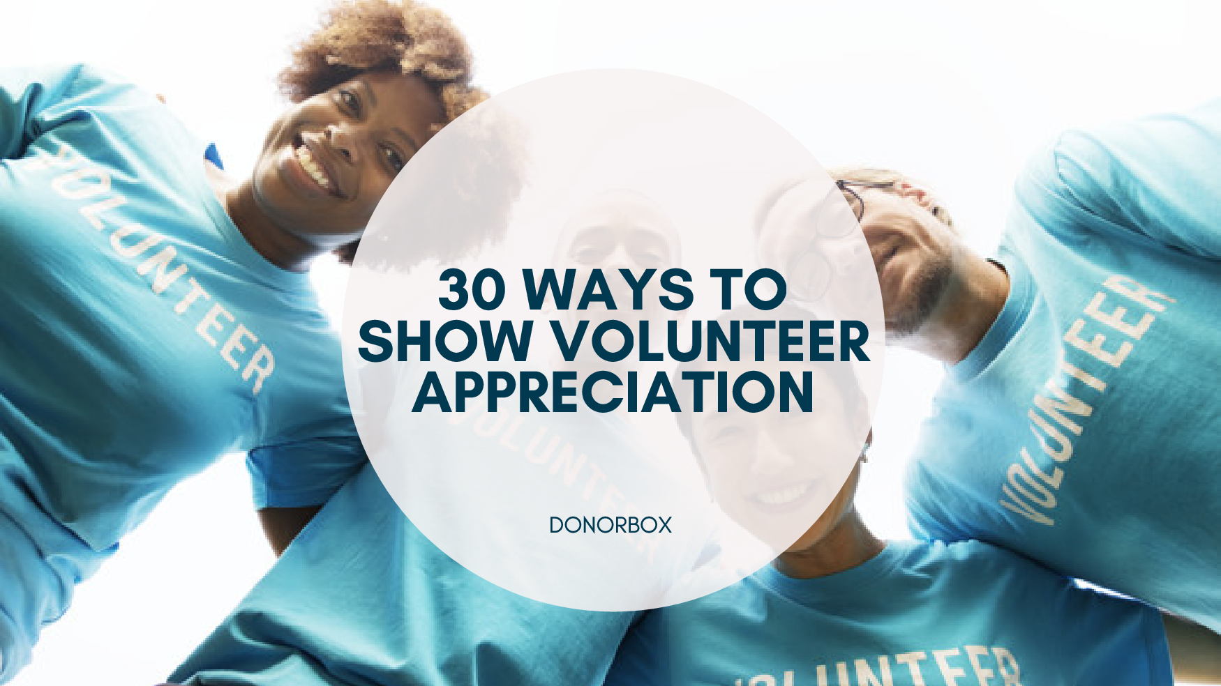 Show Volunteer Appreciation