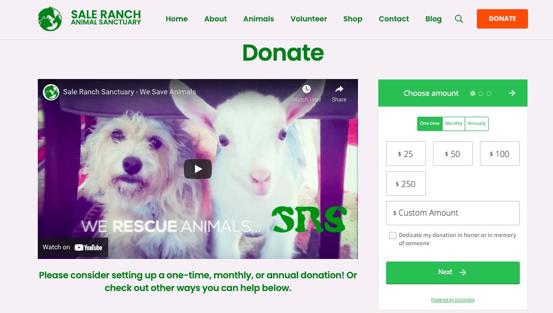 animal charities to donate to