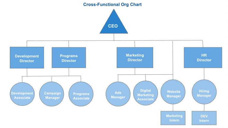 nonprofit structure